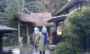 kokonotsuido2011.jpg